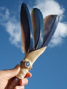 他の写真3: スピリットコンゴウインコワンド